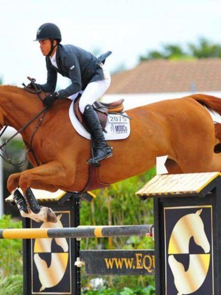 اسب سواری به صورت pptx و word